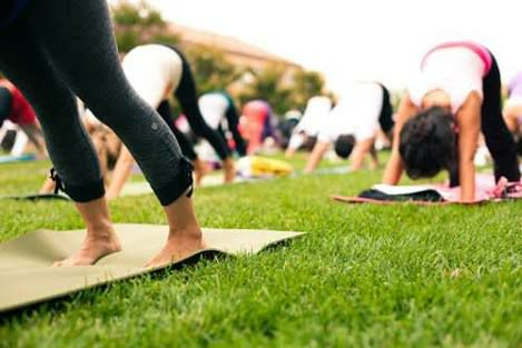 Yoga at Linde Reserve Stepney