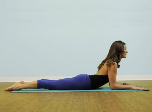 Yoga for back strength. Sphinx pose